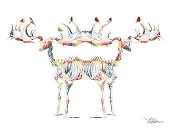 Mirrored Elk