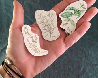 Rosemary, Thyme, and Mint, Herbal Stickers