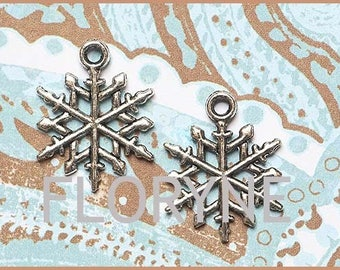 4 charms Charms Pendants: silver metal Flake