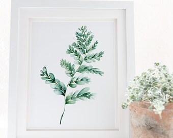 Fern print botanical wall art, Gift for her, Fern illustration in green watercolour, Fern plant poster, Digital fern wall art, Fern painting