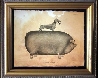 Dachshund Wiener Dog Riding Pig - Vintage Collage Art Print on Tea Stained Paper -  dog art - dog gifts -- father's day gift