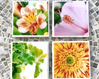 Flower Coasters, Resin Coasters, Ceramic Tile Coasters, Set of 4 Coasters, Flower Photography, Yellow Orange and Green Flowers, Gift