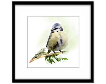 Bird Painting, Blue Tit Printable Watercolour Art, Blue Bird Instant Download, Bird Lovers Wall Art