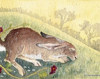 Sleeping Hare - archival print 6 x 4 inches