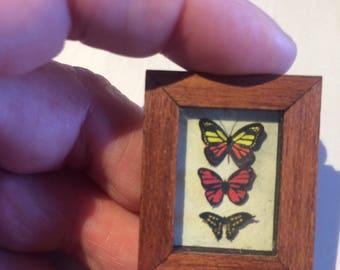 Dollshouse Miniature papillons dans un cadre