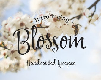 Font bundle 5 fonts for 5 dollars - handwritten calligraphy -commercial license included -digital font download -wedding font, cursive font
