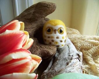 Needle Felted Yellow Saw Whet Caffeinated Owl