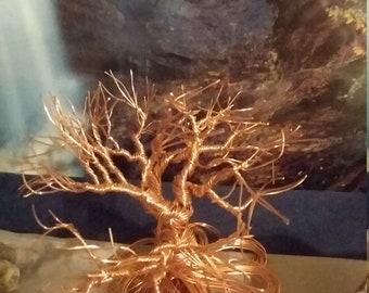 Copper tumbleweed tree