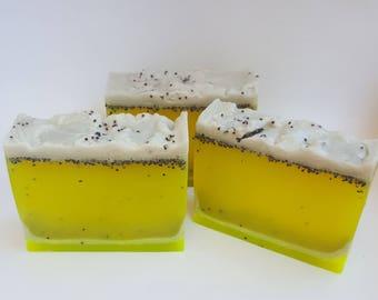 Exfoliating Poppy seed Body Wash Organic Vegan Soap