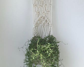 Aria Hanging Wall Planter on Driftwood, Includes both Porcelain Pot and Macrame Cotton Hanger
