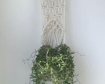 Aria jardinière sur le mur suspendue sur bois flotté, comprend à la fois de Pot en porcelaine et de macramé suspension de coton