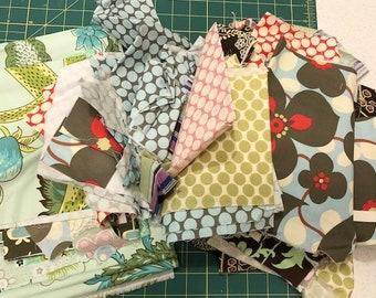 Fabric Scrap LOT 2 | Amy Butler fabrics |  Lotus | Soul Blossom