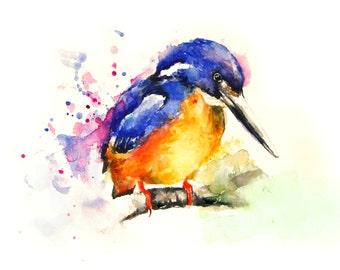 Bird, Original Watercolor Painting, Bird Painting, Color bird, Boba painting