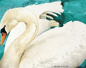 Swan Original Watercolor Painting