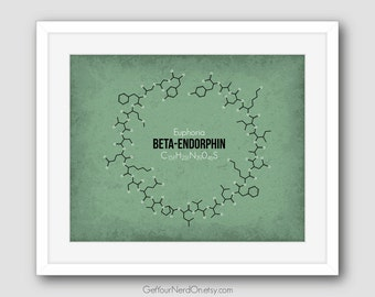 Beta Endorphin Print, Molecule Poster, Science Nerd Gifts, Molecular Biology