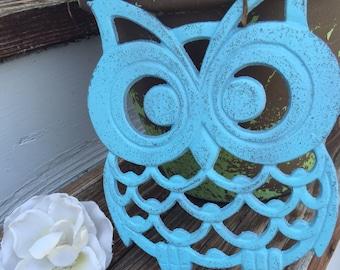 Owl Trivet/ Cast Iron Owl Trivet/ Large Owl Trivet/ Blue Owl Trivet/ Kitchen Decor