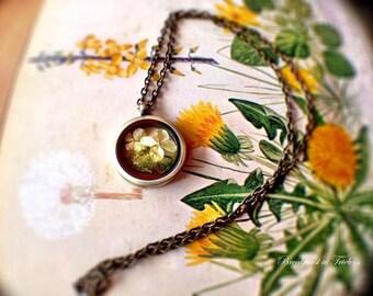 """Medallion """"Annabelle"""" hydrangea bronze"""