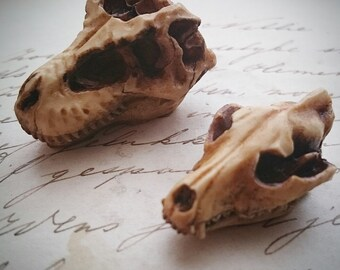 Antiqued Aged Wolf T-rex Dinosaur Skull Cameo Cabs Resin Cabochon Taxidermy Animal Steampunk Gothic Goth Skull Aged Ivory 1 PIECE