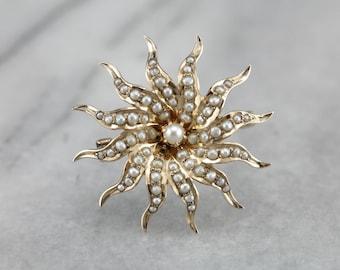 Antique Seed Pearl Starburst Brooch, Victorian Pearl Brooch, Antique Estate Jewelry VQ8J2HJA-C