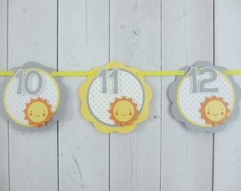 Sunshine Sun 12 Month First Year Photo Banner Sign Birthday Party Sunny Yellow Grey