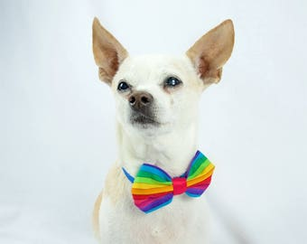 Rainbow Dog Bow Tie, Pride Dog Bow Tie, Pet Bow Tie, Animal Bow Tie, Cat / Dog Bow Tie, LBGTQ Pride Dog Bow Tie, Made to Order Dog Bow Tie,