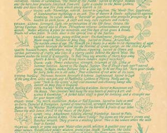 Celtic Trees Book of Shadows Parchment