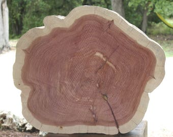 Wood Slab Table, DIY Table Top, Wood Slab Furniture, Do it Yourself, Rustic Coffee Table, Wood Side Table, Reclaimed Wood Slice Table Top