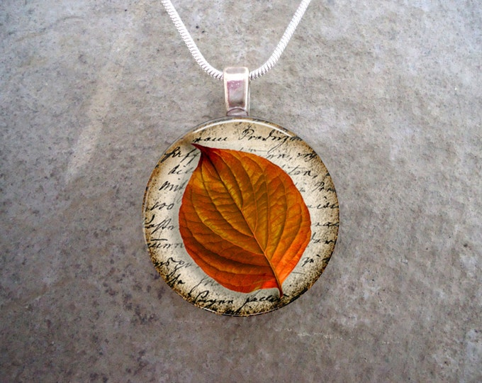 Leaf Jewellery - Glass Pendant Necklace - Fall jewelry - Autumn Leaves 9