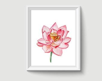 Lotus Flower Watercolor Painting Poster Art Print P318