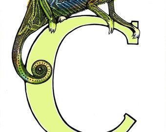 Chameleon - Alphabet Print - Unique Gift - Letter C - Name Gift
