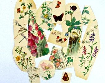Vintage journaling, Scrapbooking kit, Scrapbooking journal, Scrapbooking cut outs,  Flowers cut outs, Animals Birds,  Edwardian Lady Diary