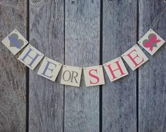 He or she banner, gender reveal banner, gender reveal ideas, gender reveal decorations, he or she sign, gender reveal party, he or she ideas