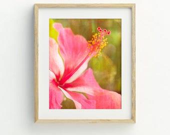 Tropical flower art printable, hibiscus flower printable, Hawaiian decor, Hawaii art, printable photography, DIY tropical flower print.