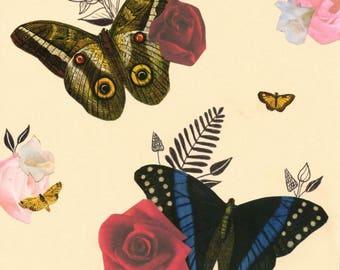 Vintage Butterflies & Flowers