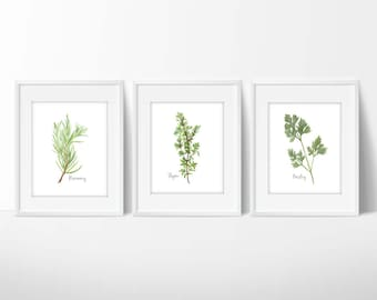 Herb Prints | Botanical Herb Prints | Kitchen Art | Herb Print | Kitchen Decor | Botanical Print | Herbs Print | Kitchen Wall Art | Herb Art