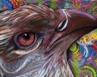original art drawing 16x20 Point of View colorful hawk zentangle