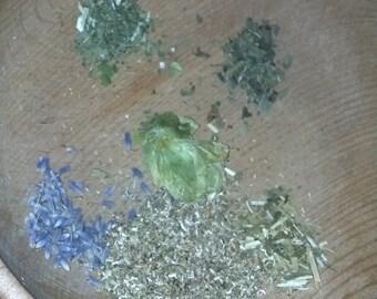 Dragonfly Dreams Tea with Mug