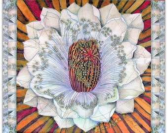 Apple Cactus - archival BOTANICA print on ricepaper