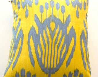 Ikat  decorative pillows