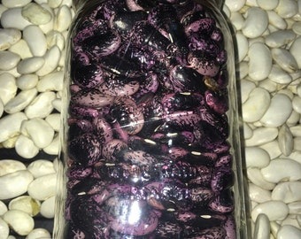 Vegetable Organic Runner Beans