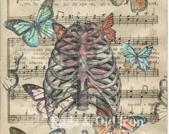 Ribcage and butterflies mixed media collage, macabre, curious, human anatomy, butterfly art, vintage sheet music, Russian, goth, art print