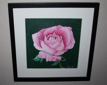 Pink Petals Original Drawing