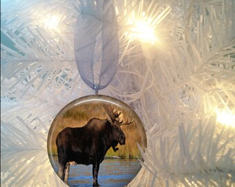 Moose #3 Christmas Tree Ornament