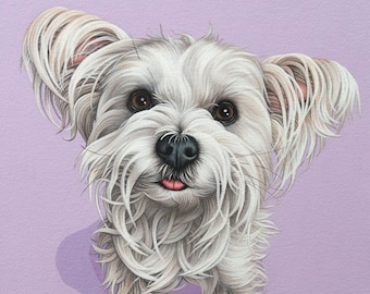 Custom Pet Portrait, 10x15 Portrait of Your Dog, Hand Painted Contemporary Pet Painting, Gift for Dog Lover, Mother's Day Gift, White Dog