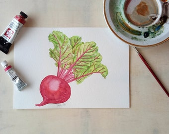 Beetroot Original Food Illustration Watercolour Illustration