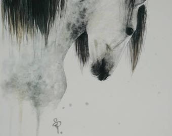Dapple Grey Horse Watercolor PRINT -SALE-buy 2 get 1