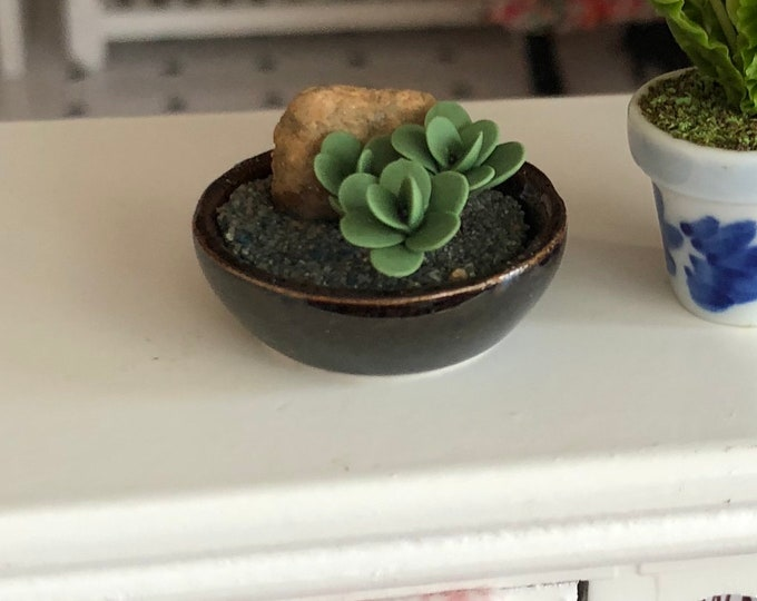 Featured listing image: Miniature Jade Plant, Mini Jade in Decorative Ceramic Bowl, Dollhouse Miniature, 1:12 Scale, Dollhouse Flowers, MIni Plant, Accessory