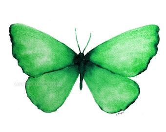 """emerald green butterfly archival 5"""" x 7"""" print of watercolor painting"""