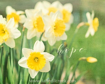 Daffodil Photo, Yellow and Green Wall Art, Hope Wall Art, Inspirational Wall Decor, Spring Art Print, Hope Quote, Encouragement Gift