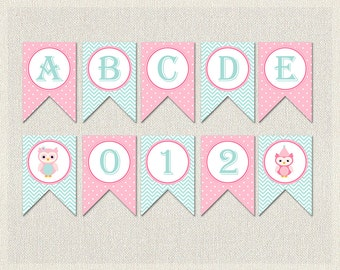 Owl Banner Bunting Birthday Complete Alphabet Light Pink Blue 1st 2nd 3rd Printable Girls IV-14